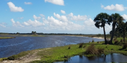 St Johns River at Tosohatchee WMA