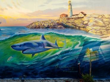 Cocoa Beach Jazzys Shark
