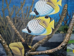 Fat Kahuna Cocoa Beach Mural Fish 3