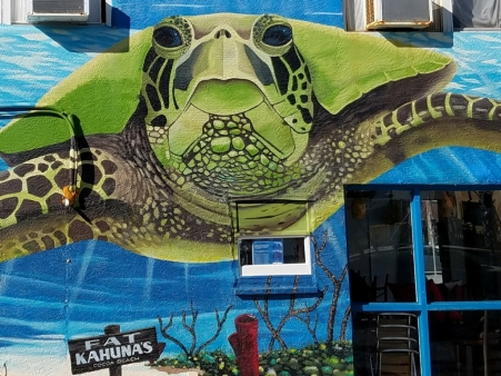 Fat Kahuna Cocoa Beach Turtle Mural close up