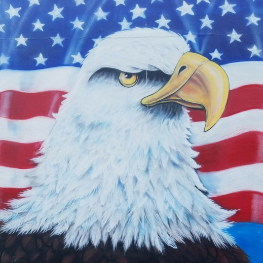 VFW 10131 Eagle