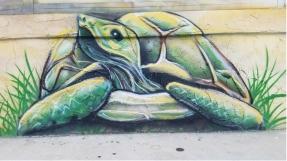 Turtle 1 Jennas Breezeway Cocoa Beach Insider
