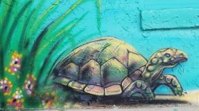 Turtle 2 Jennas Breezeway Cocoa Beach Insider