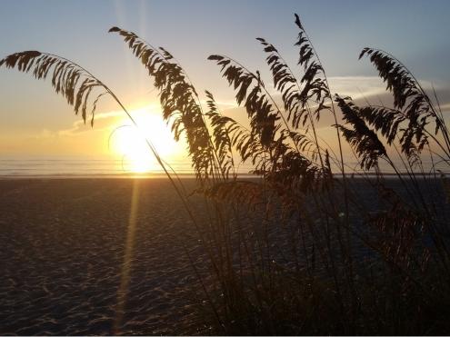 Cocoa Beach Insider Sunrise