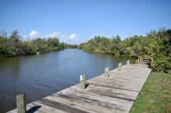 Explore the Banana River & Mangrove Islands