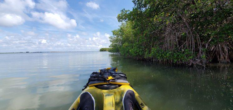 Skirting the mangrove islands