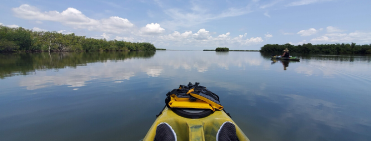 Kayaking on the Banana River. Yellow sit on top kayaks. Mangrove Islands on either side.