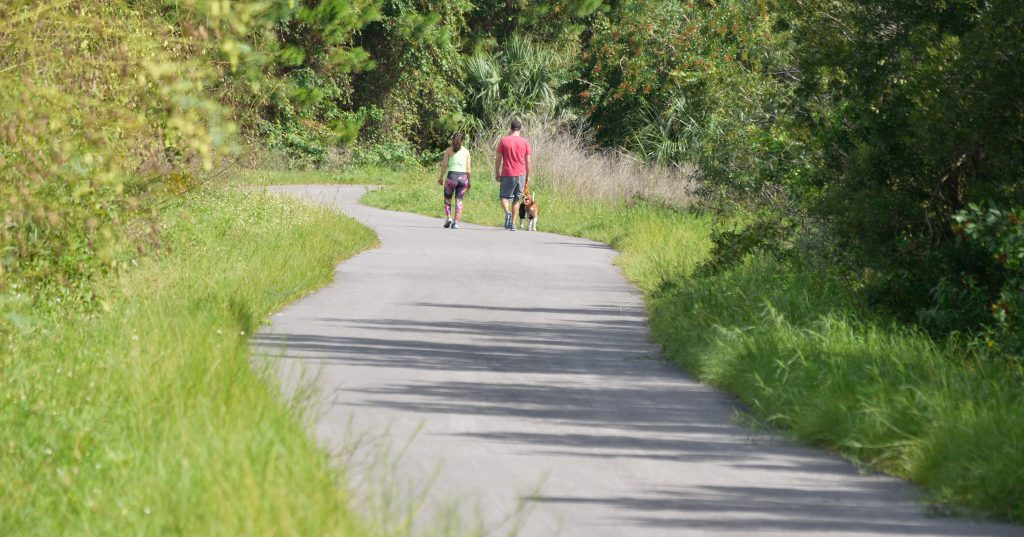 Viera has paths and sidewalks connecting the community. This is a section of the Linear Park near the Brevard Zoo showing the natural vegitation and a couple walking their dog.